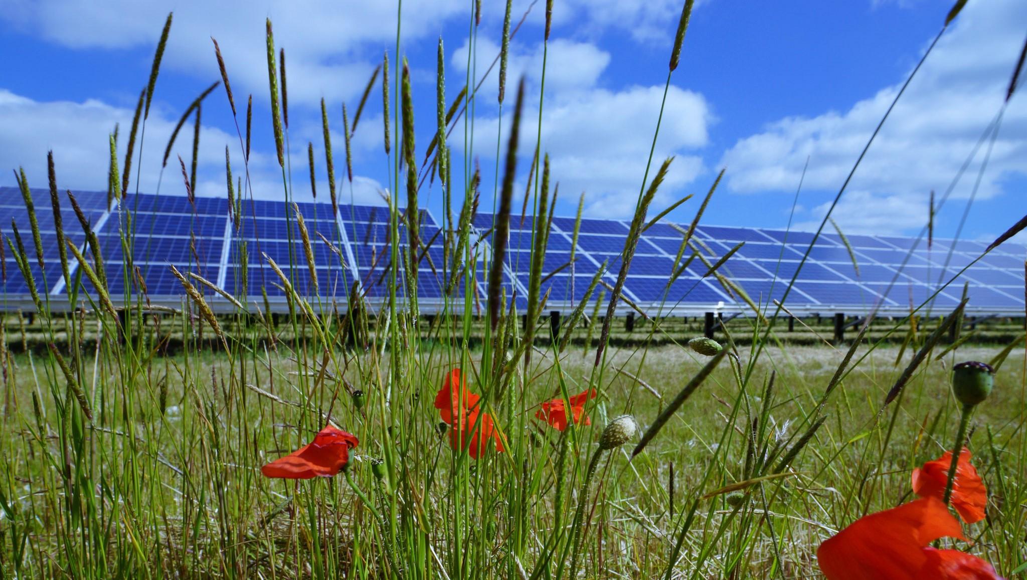 energia-fotovoltaica-sustentavel-1